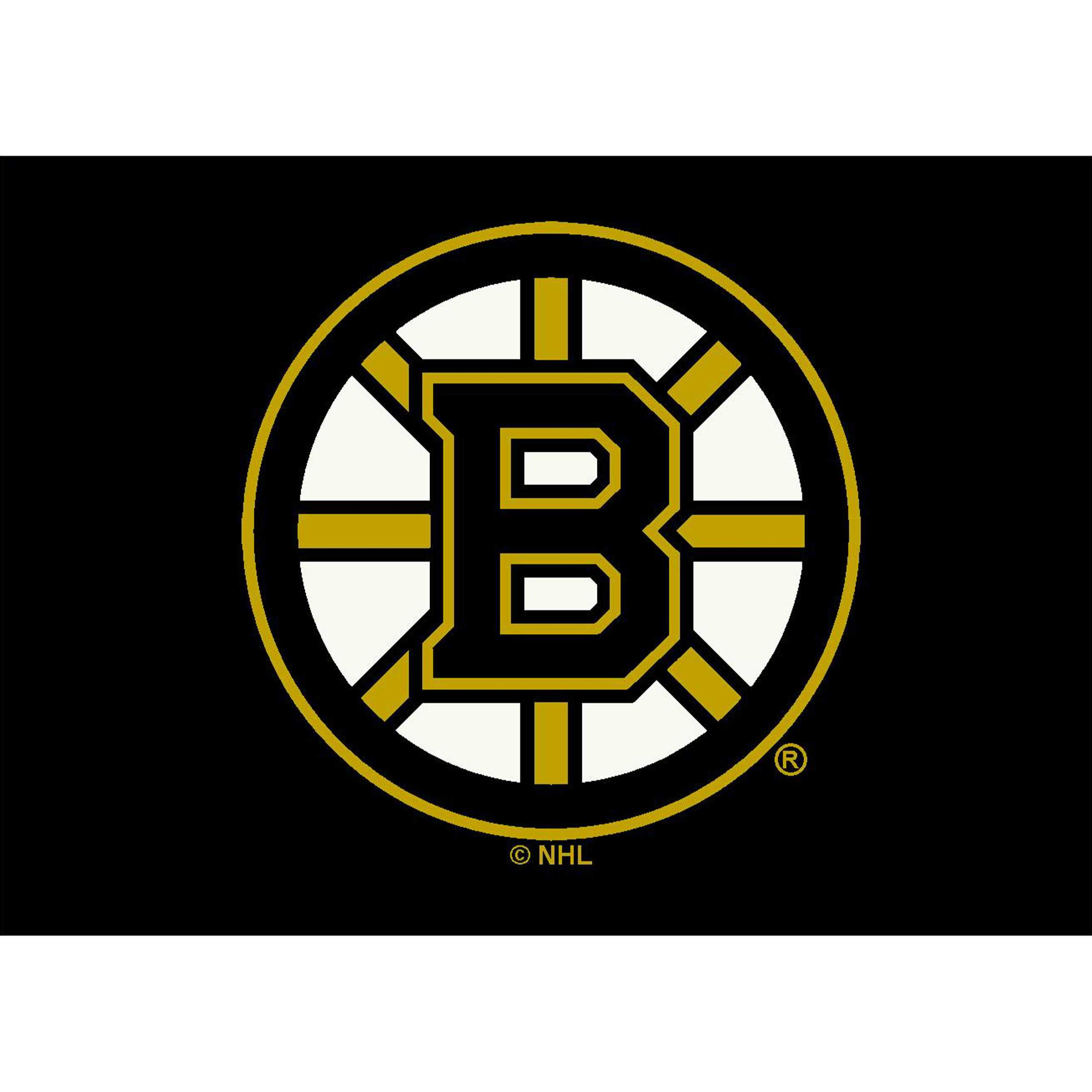 BOSTON BRUINS 4X6 SPIRIT RUG