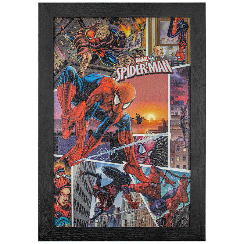 Licensed Framed Art - Spirder Man Spider Verse