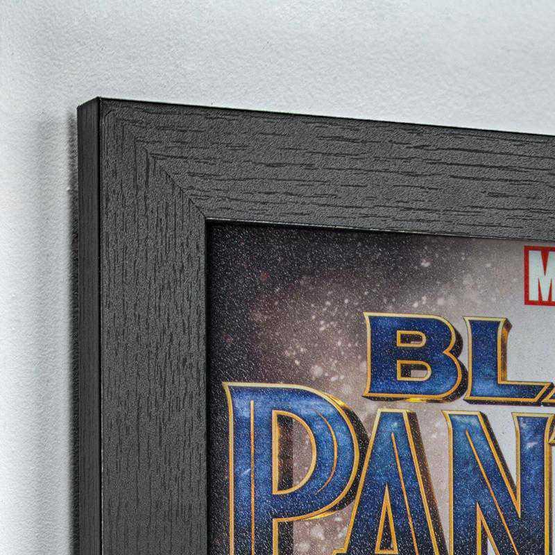 Licensed Framed Art - Black Panther Nakia Okoye